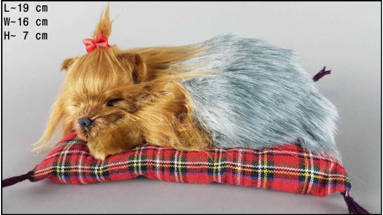 Pies Yorkshire Terrier na poduszce Rozmiar S