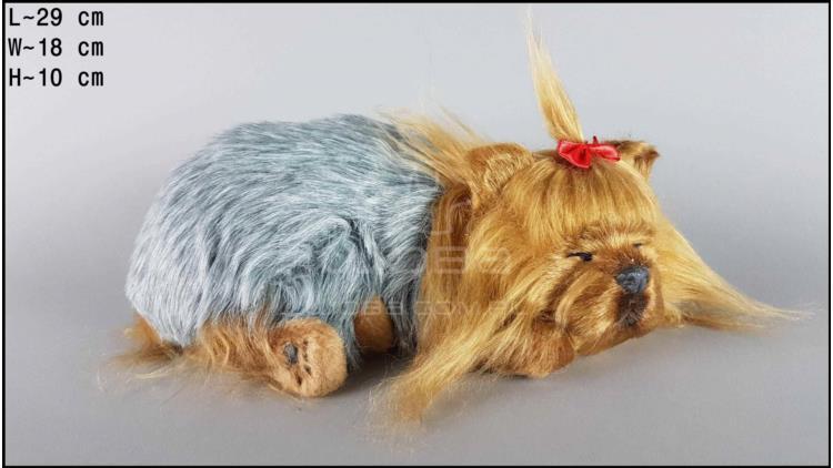 Yorkshire Terrier - Size L