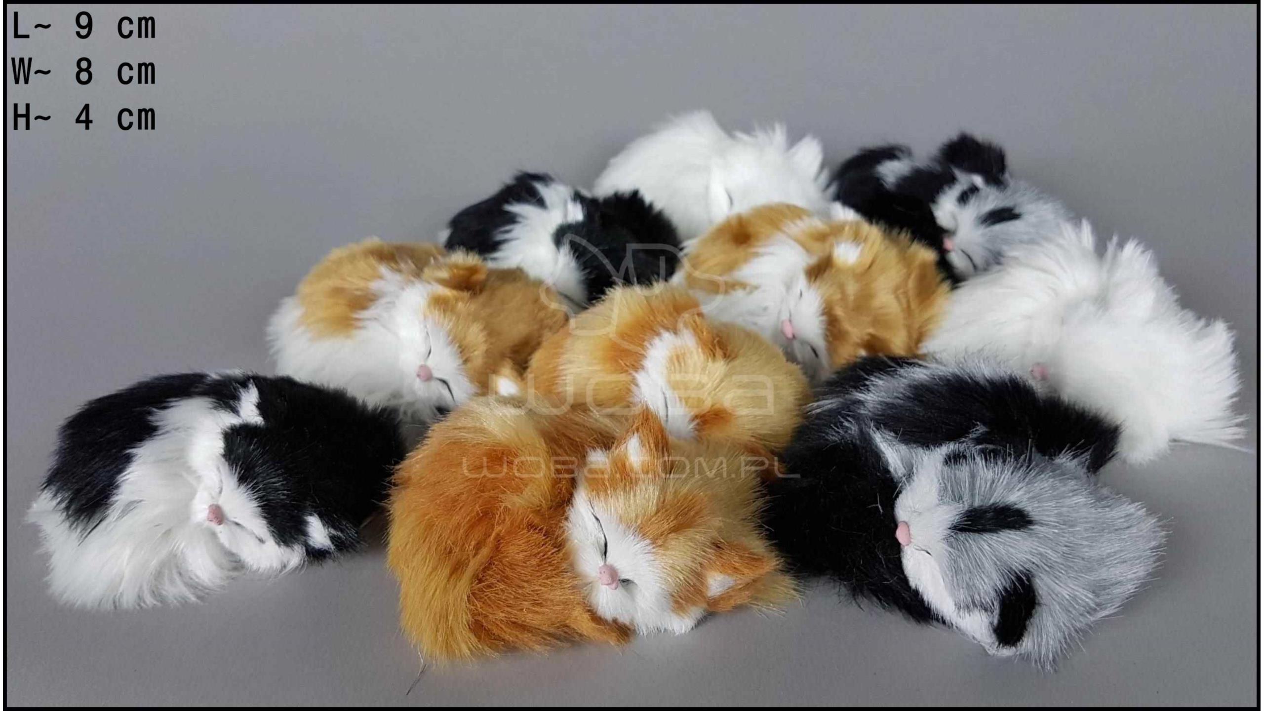 Kotek mały, miauczący (10 szt. w opakowaniu)