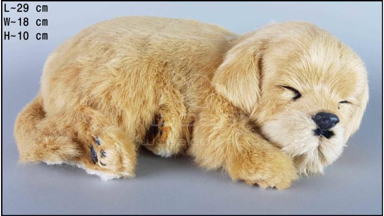 Dog Labrador - Size L - Biscuit