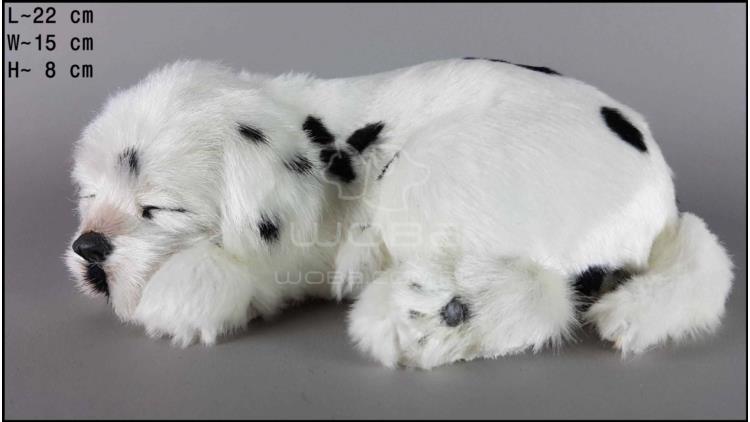 Dog Dalmatian - Size M