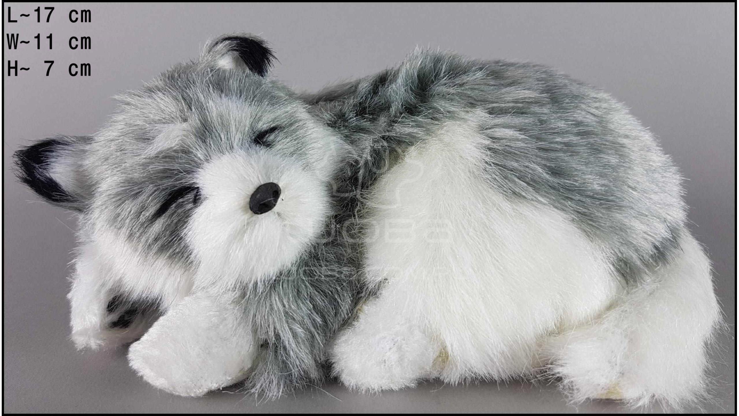 Husky - Size S