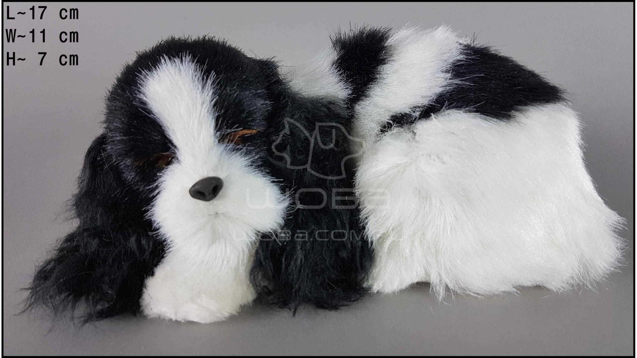 Cocker Spaniel - Size S - Black & White