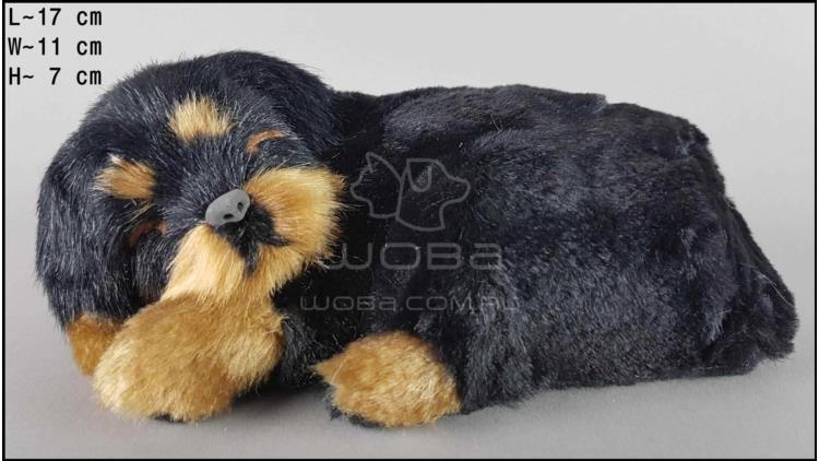 Dog Rottweiler - Size S