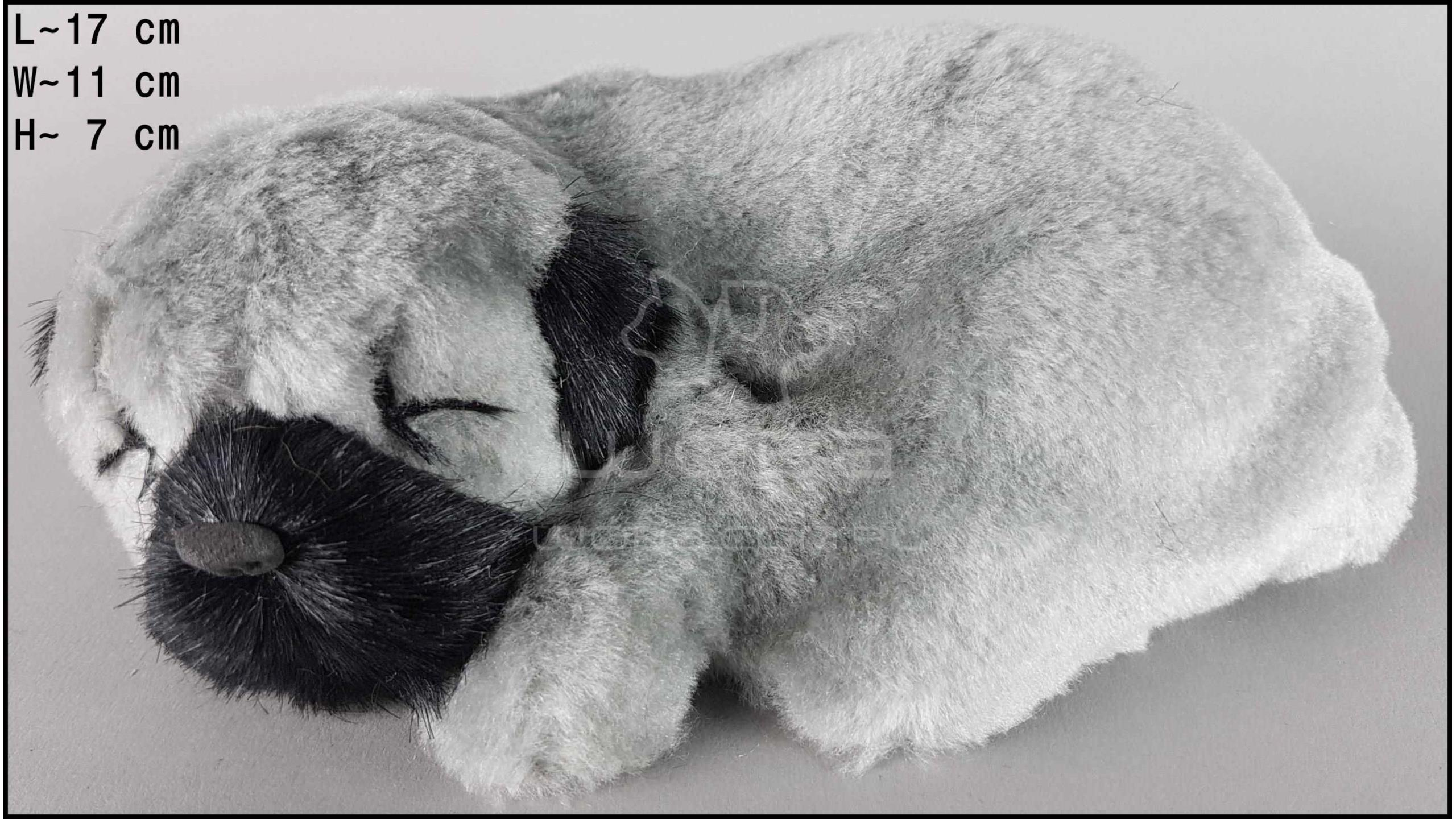 Dog Shar Pei - Size S