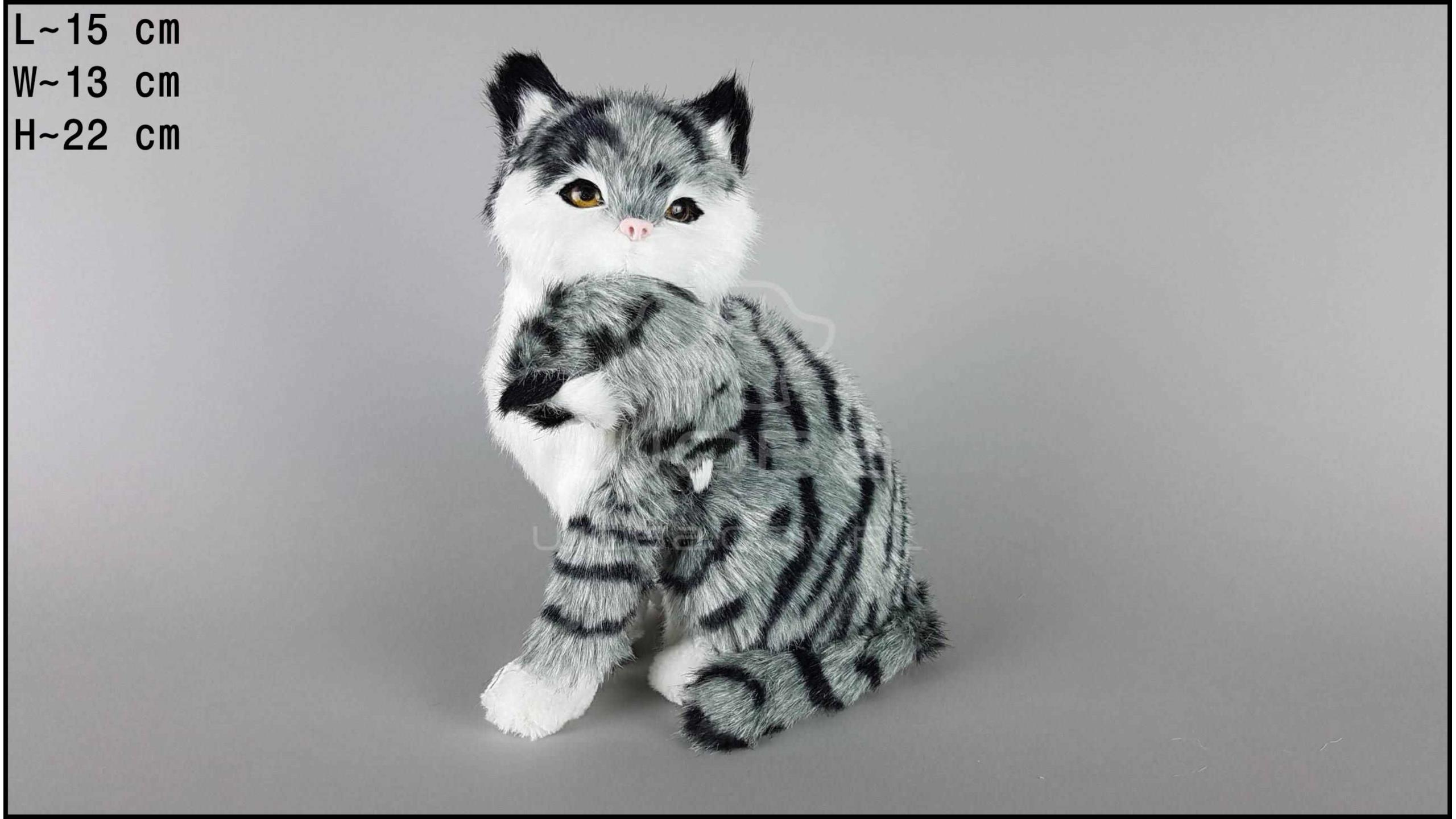 Kot duży z kociątkiem Szary