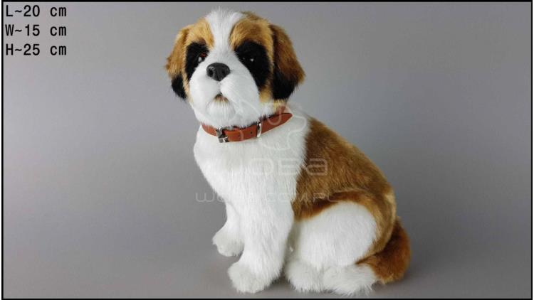 Large dog - St. Bernard