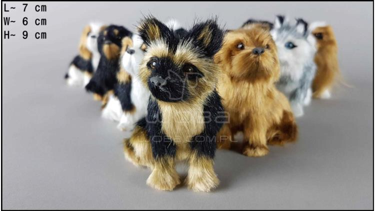 Little dogs (12 pcs in a box)