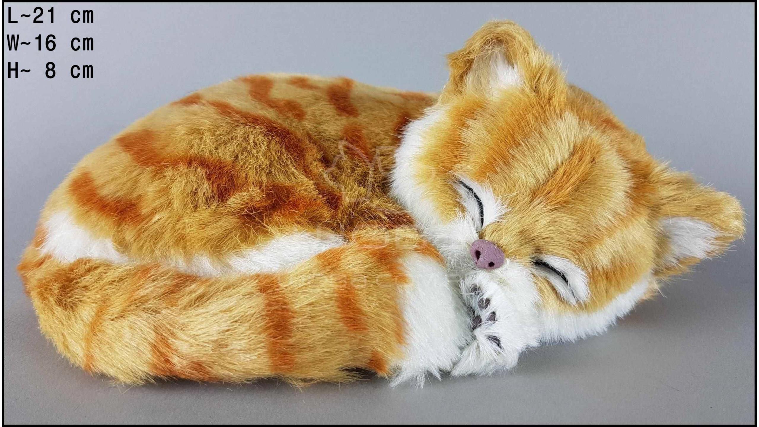 Kot śpiący Rozmiar M - Rudy