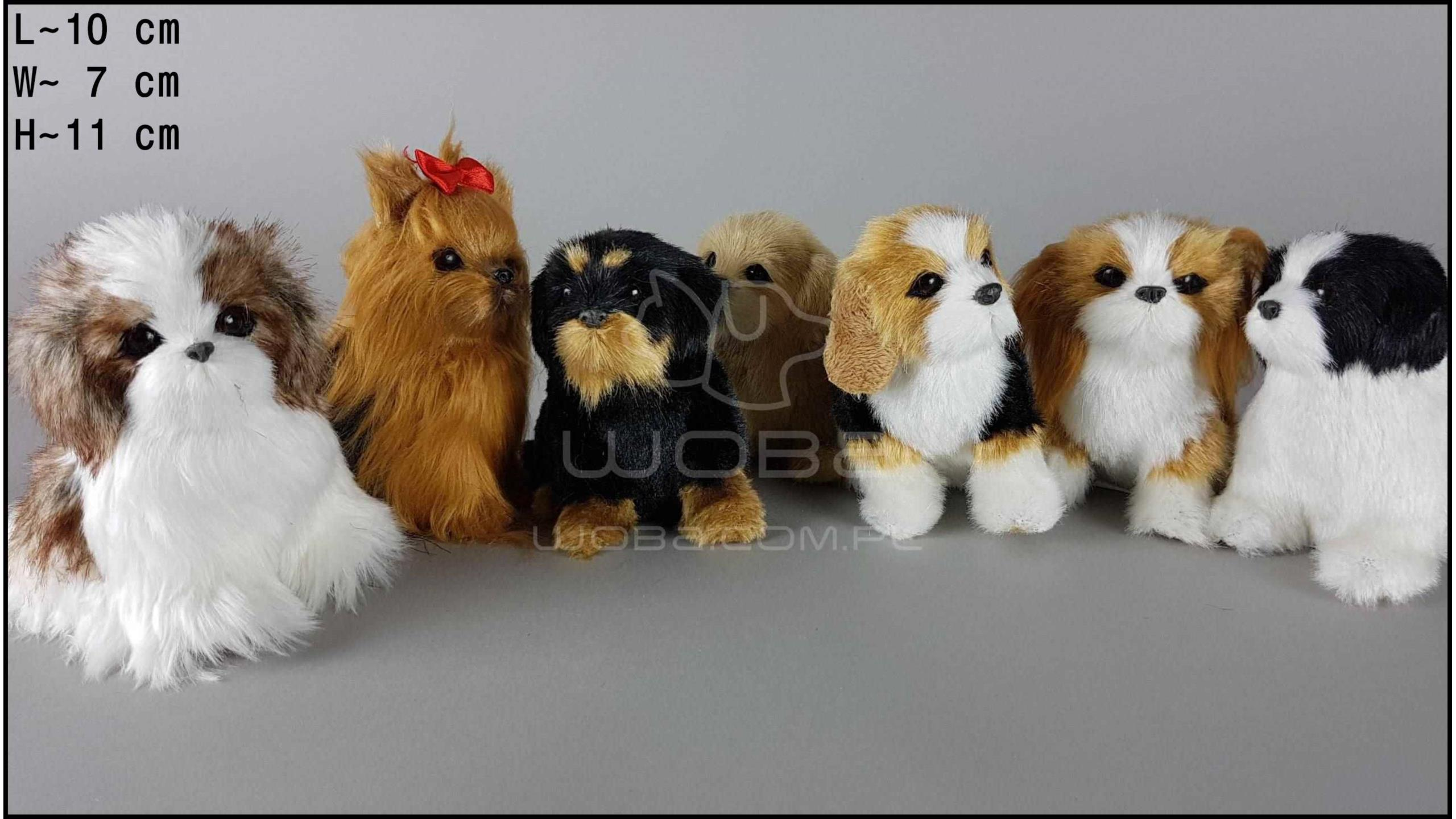 Little dogs sitting, barking (7 pcs in a box)
