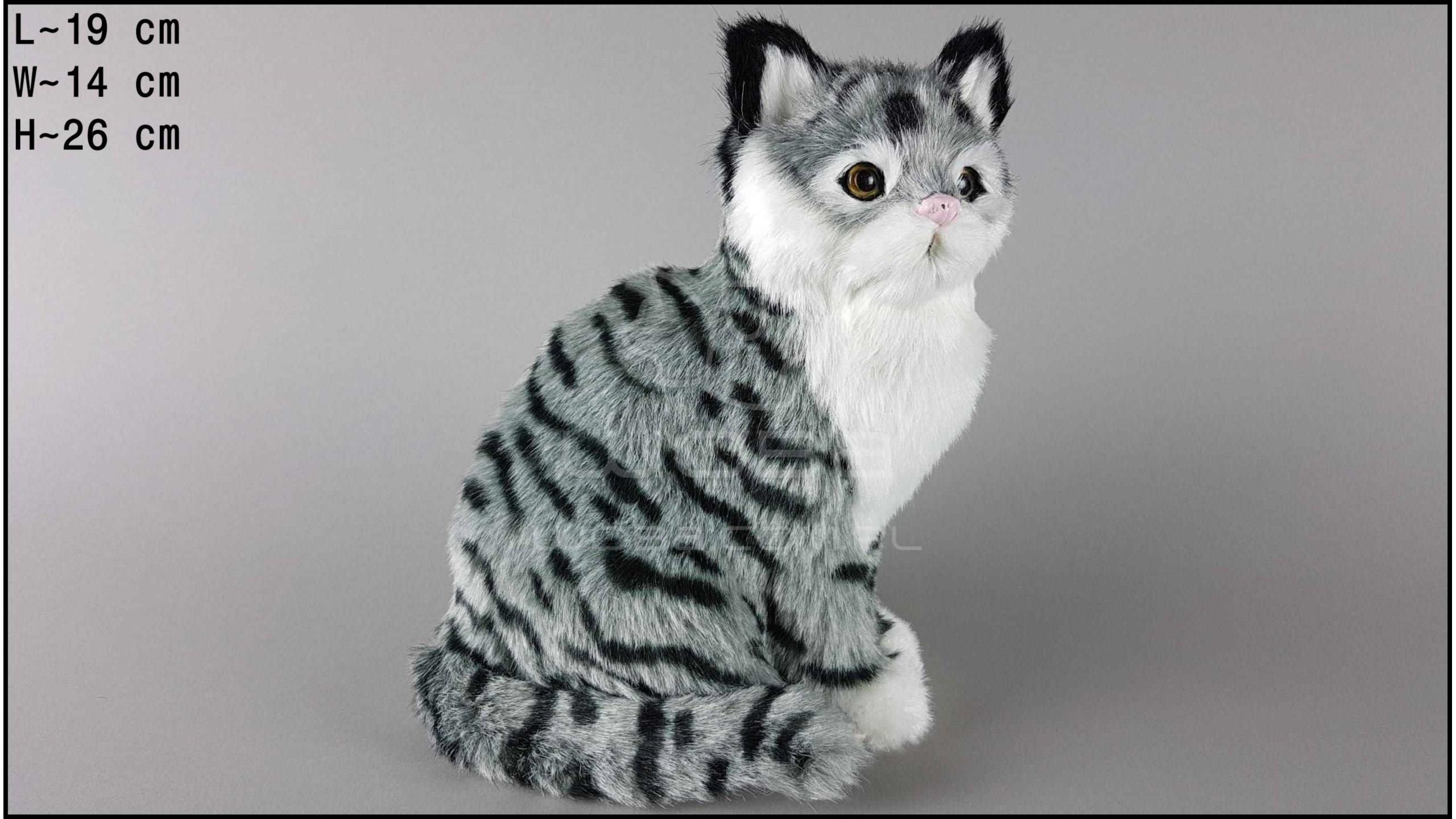 Kot duży, siedzący Szary