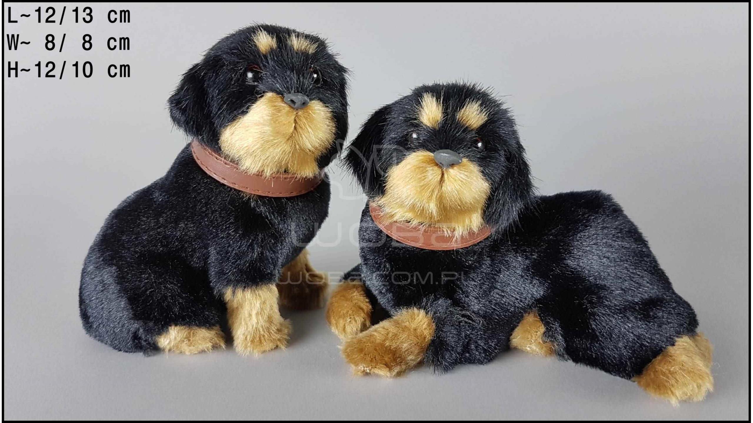 Rottweiler szczekający (2 szt. w opakowaniu)
