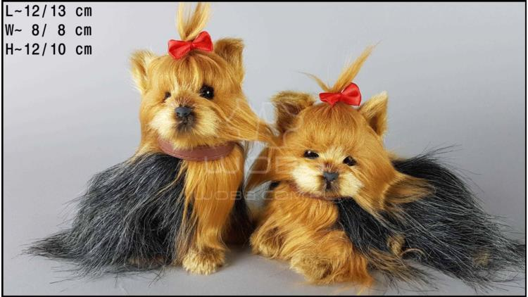 Yorkshire Terrier barking (2 pcs in a box)