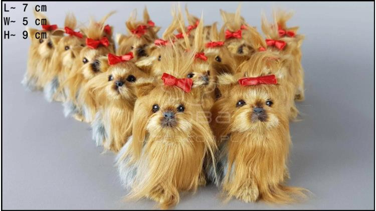 Little Yorkshire Terriers barking (19 pcs in a box)