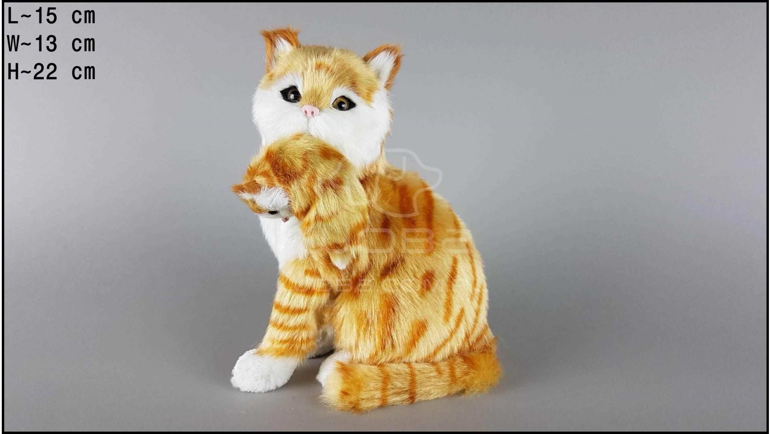 Kot duży z kociątkiem Rudy