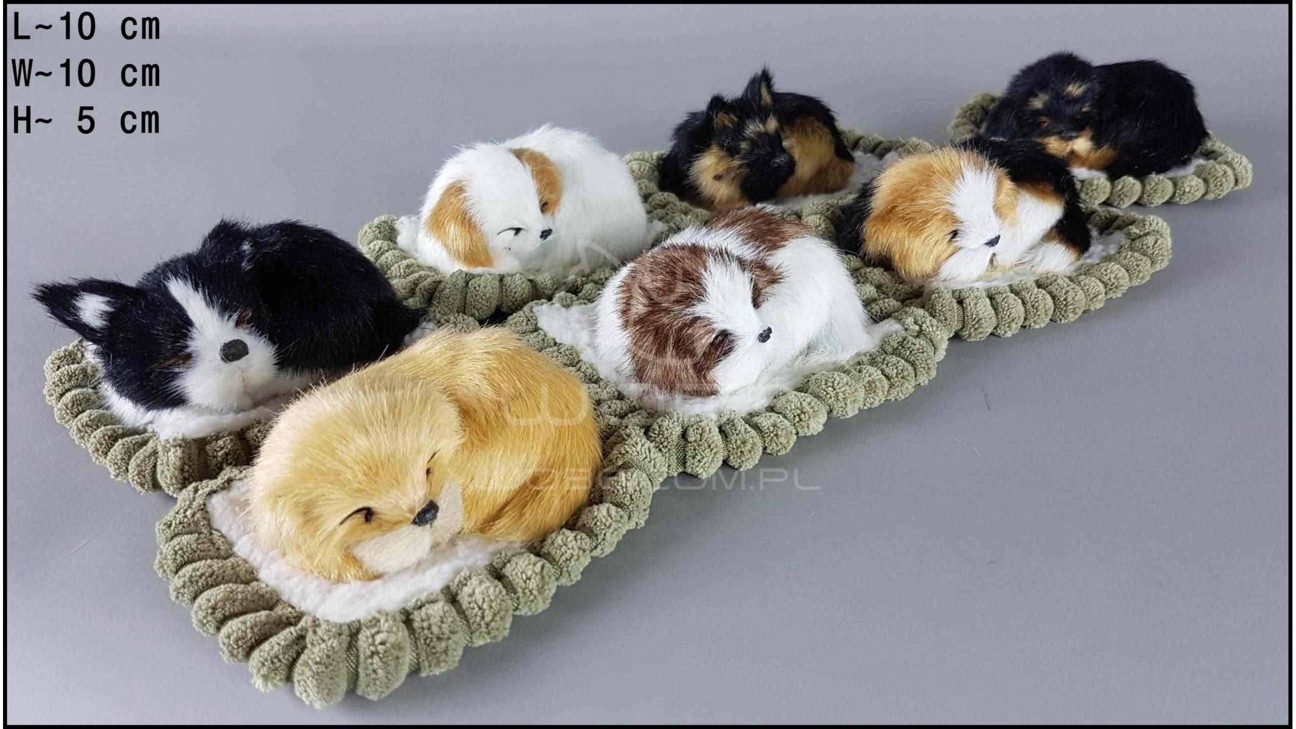 Little dogs in a rectangular cot (7 pcs in a box)