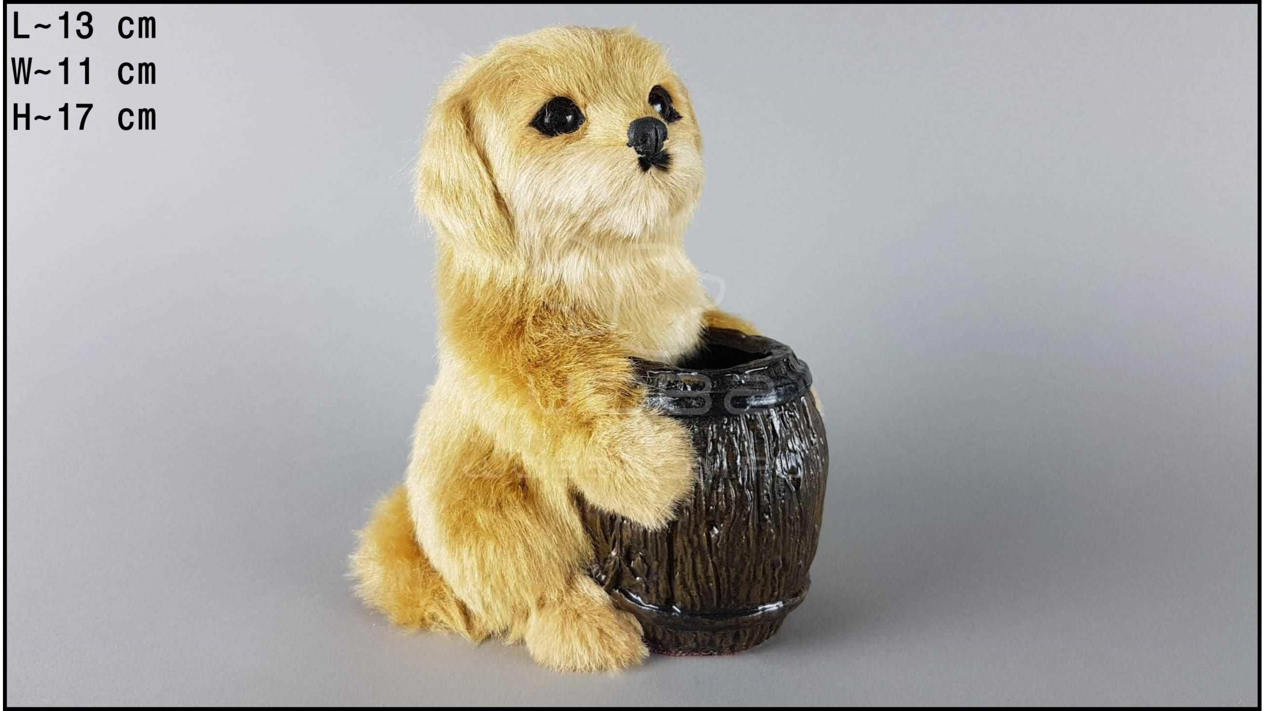 Labrador with a barrel