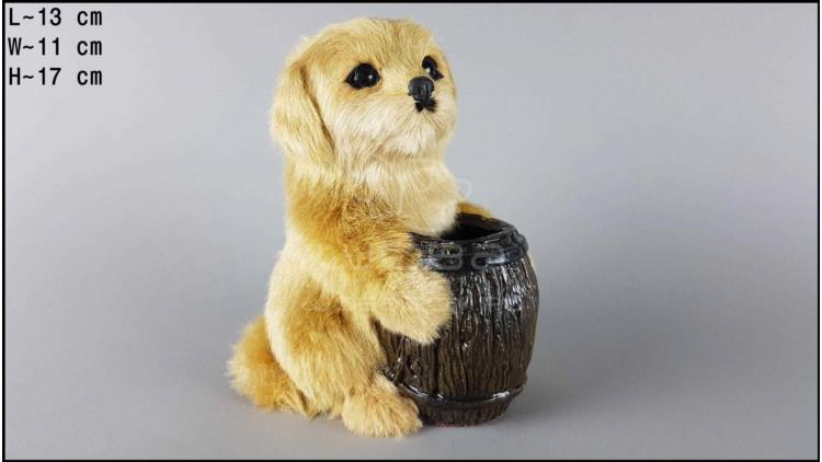 Dog with a barrel - Labrador
