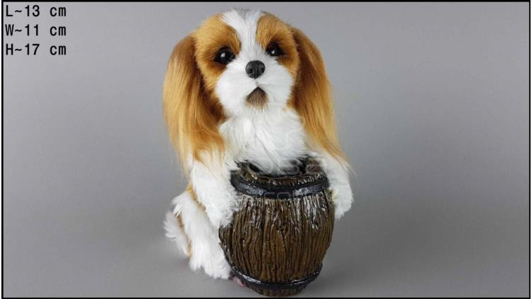 Dog with a barrel - Cocker