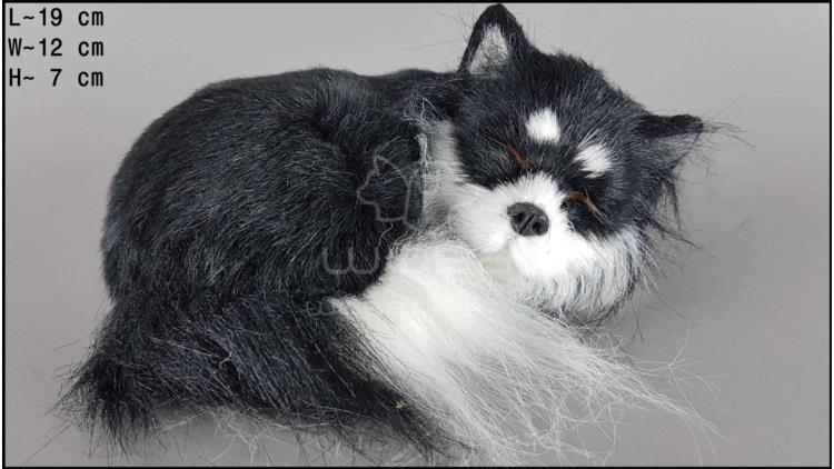 Sleeping Chihuahua (black)