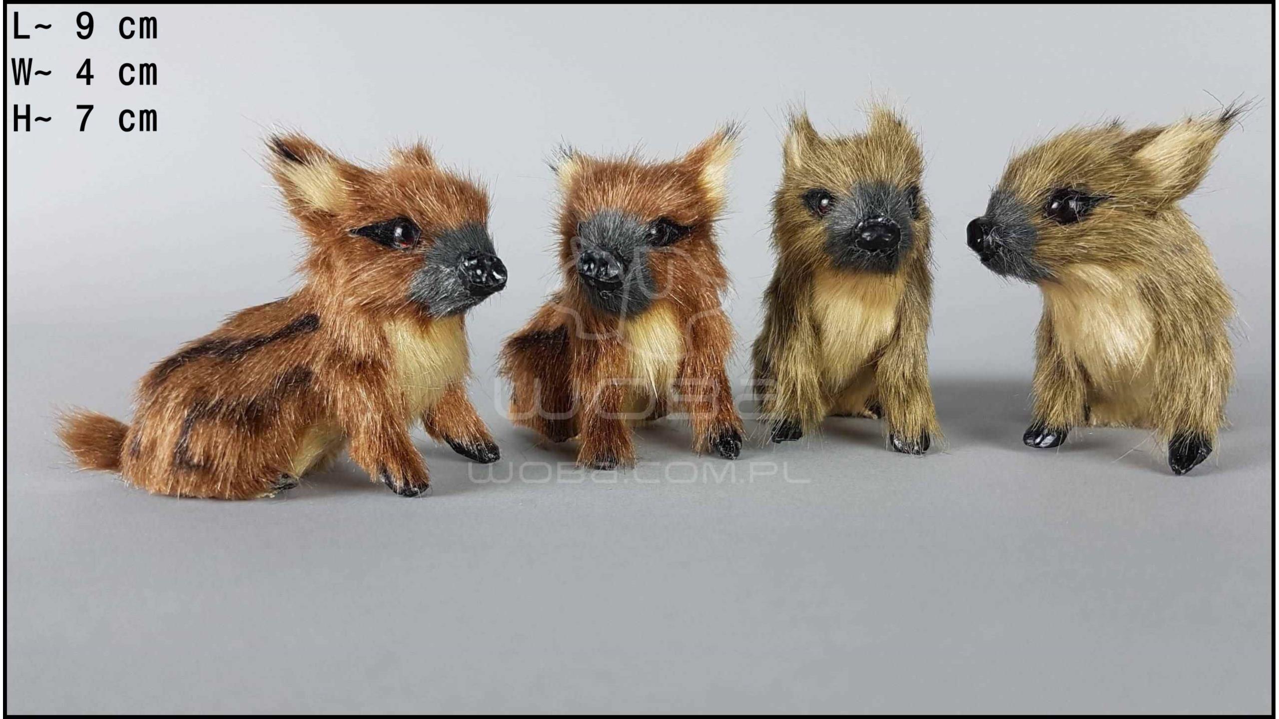 Little wild boars (4 pcs in a box)