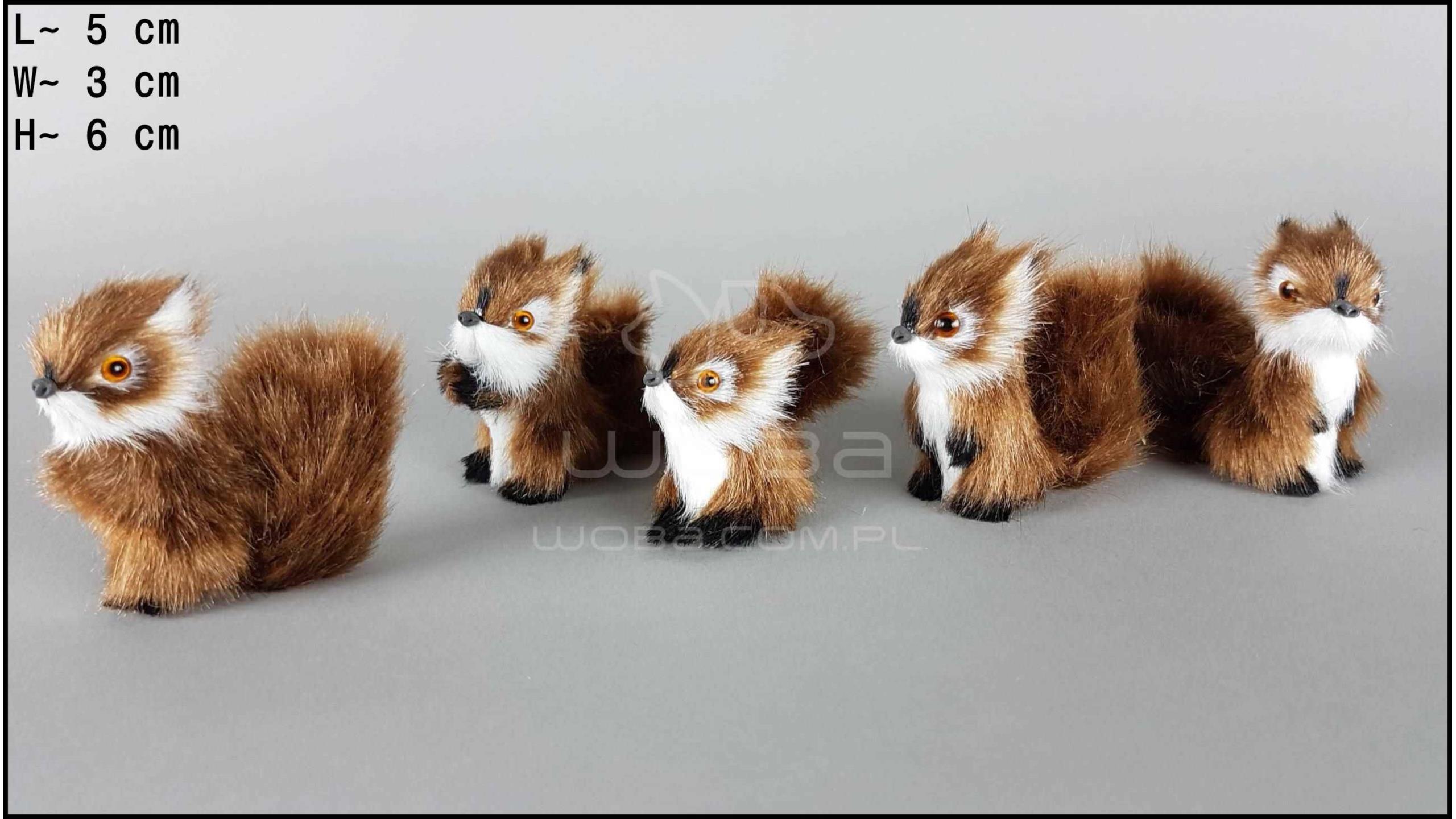 Wiewiórki małe (5 szt. w opakowaniu)