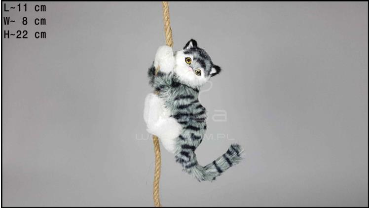 Cat climbing a rope - Grey