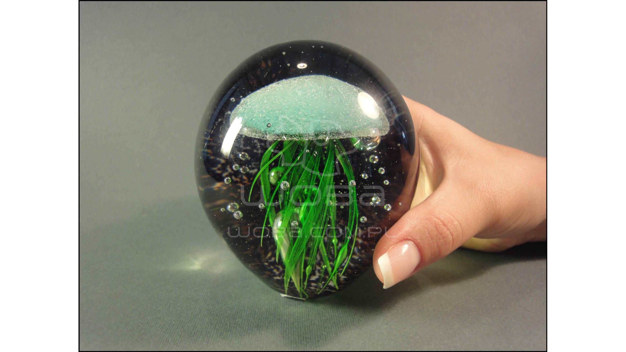 Meduza Zielona