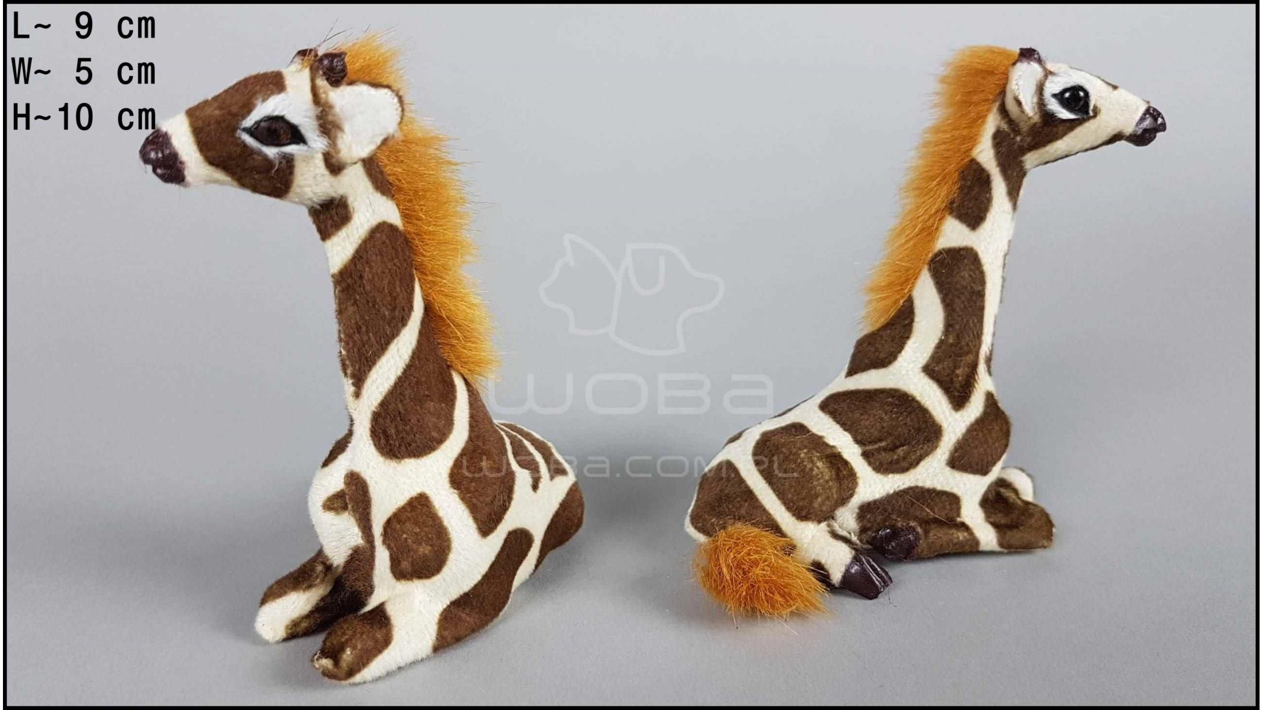 Giraffes sitting (2 pcs in a box)