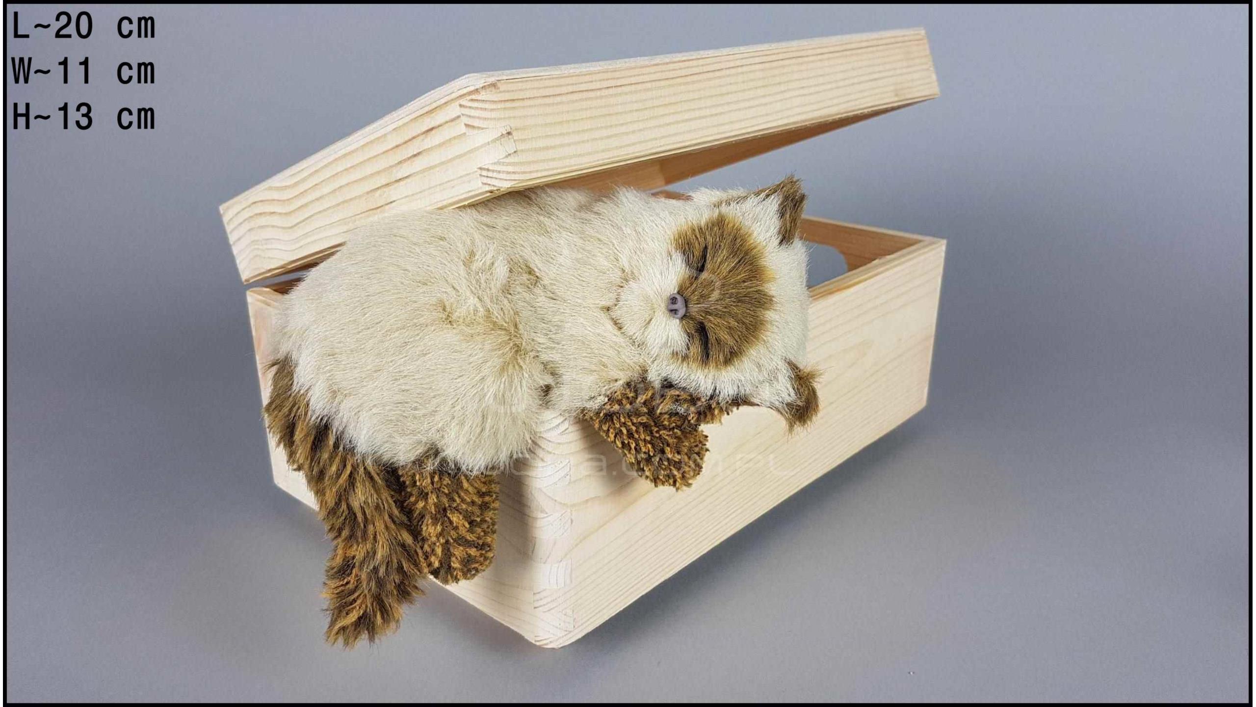 Kot wiszący Kremowy