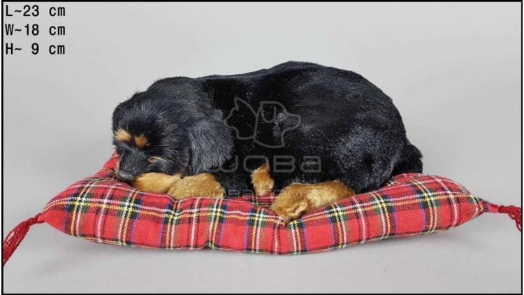 Pies Rottweiler na poduszce Rozmiar M