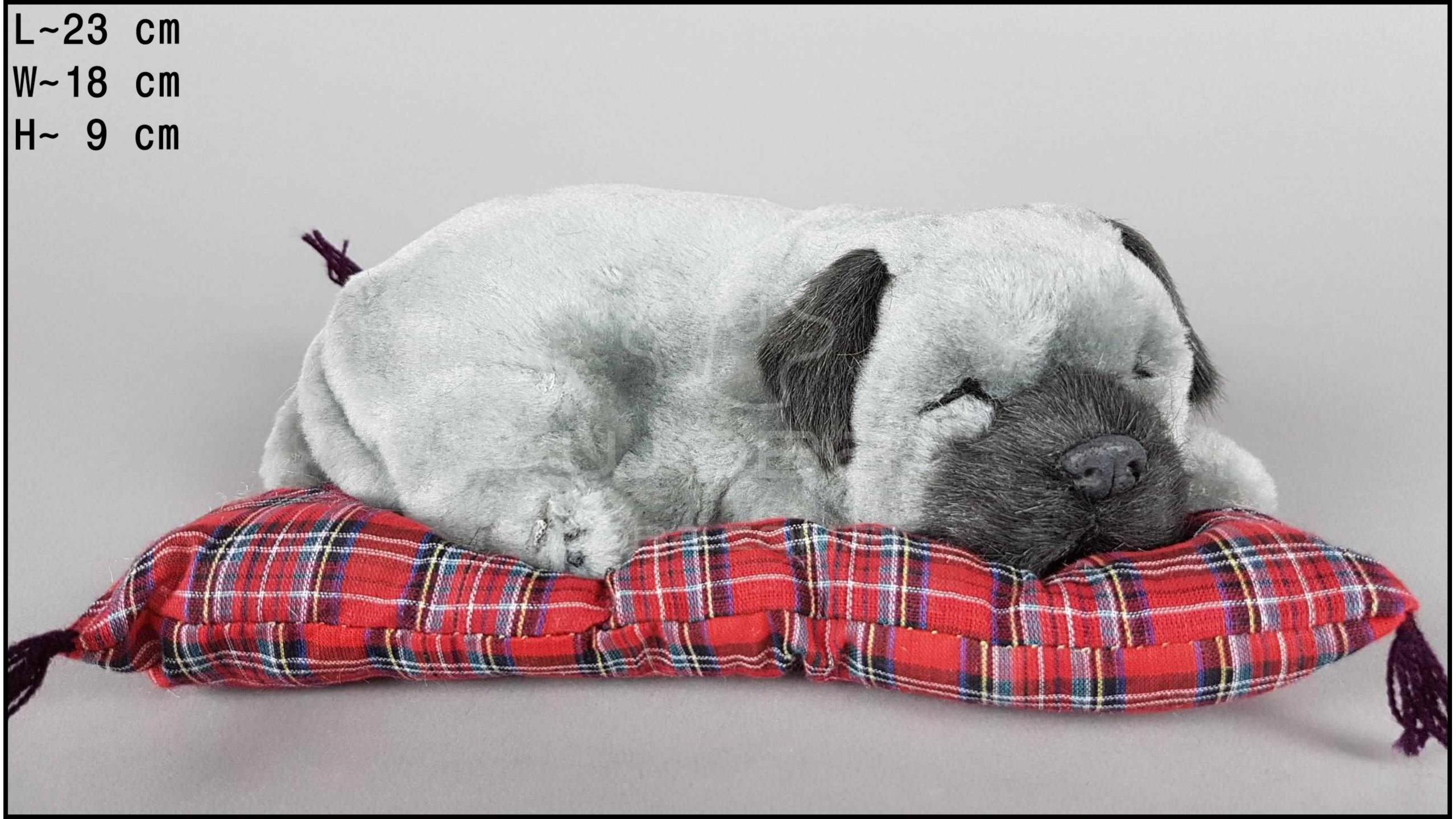 Pies Shar Pei na poduszce Rozmiar M