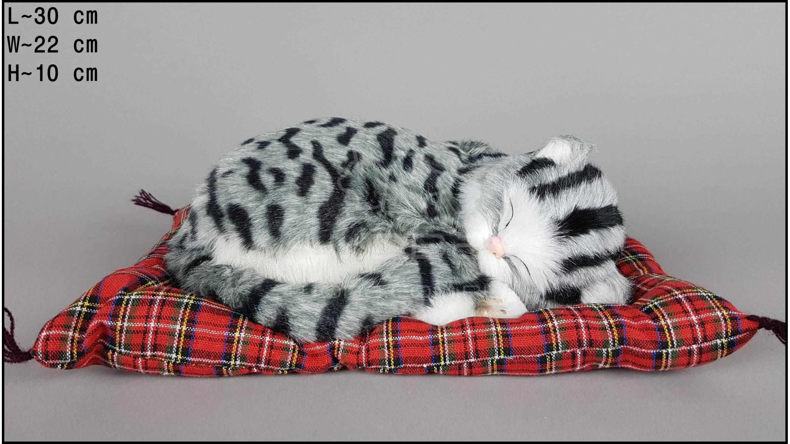 Kot śpiący na poduszce Rozmiar L - Szary
