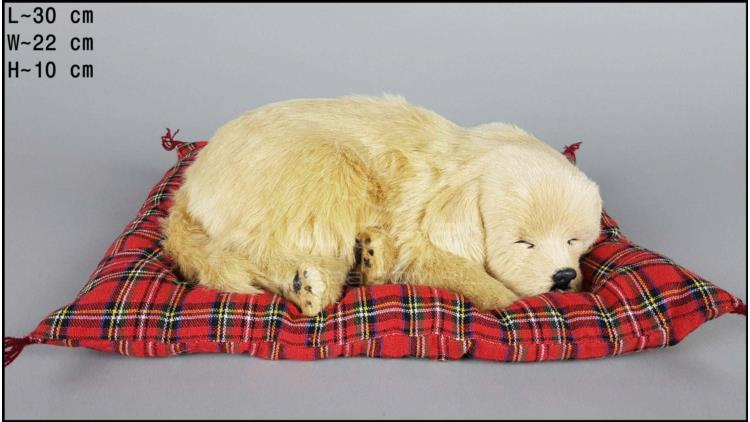 Dog Labrador on a pillow - Size L - Biscuit
