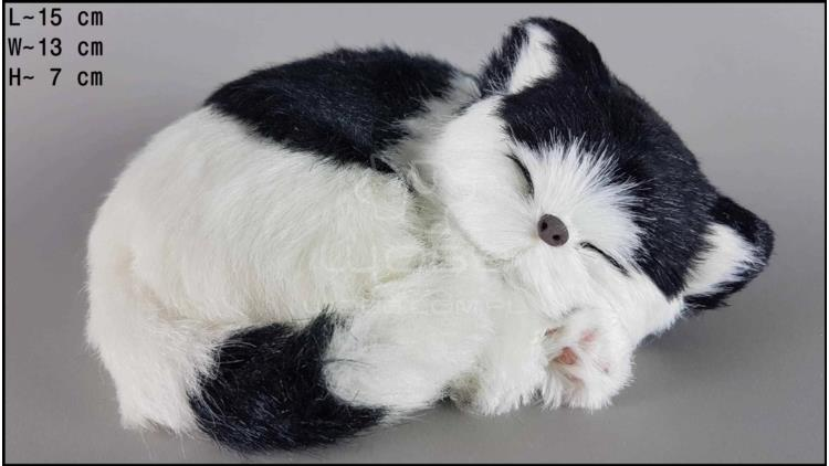 Cat sleeping - Size S - Black & White