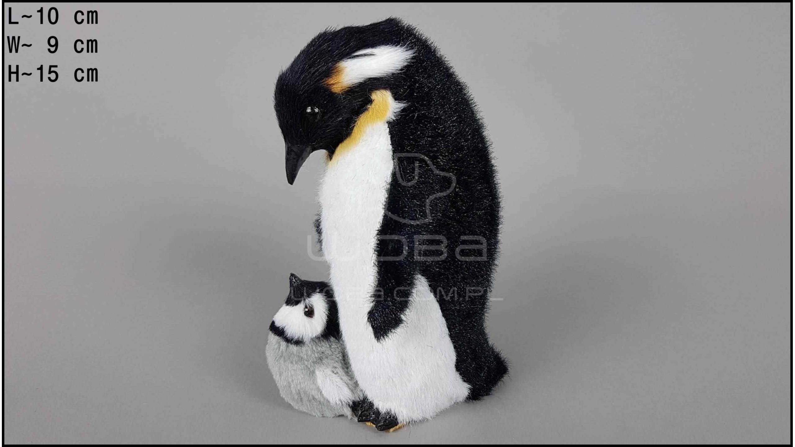 Pingwin duży