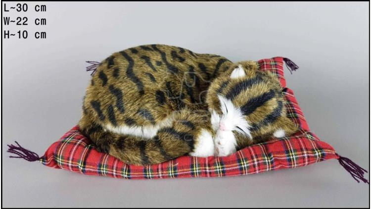 Cat sleeping on a pillow - Size L - Brown