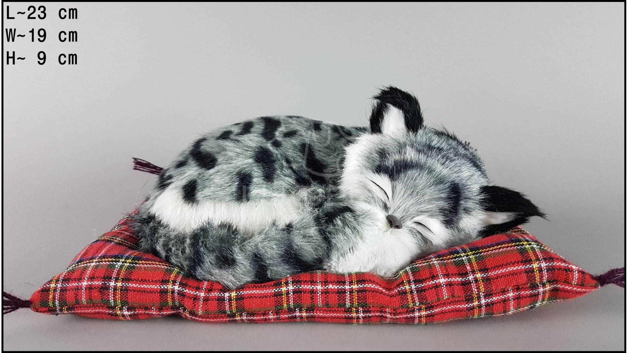 Kot śpiący na poduszce Rozmiar M - Szary
