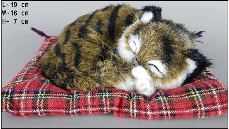 Cat sleeping on a pillow - Size S - Brown