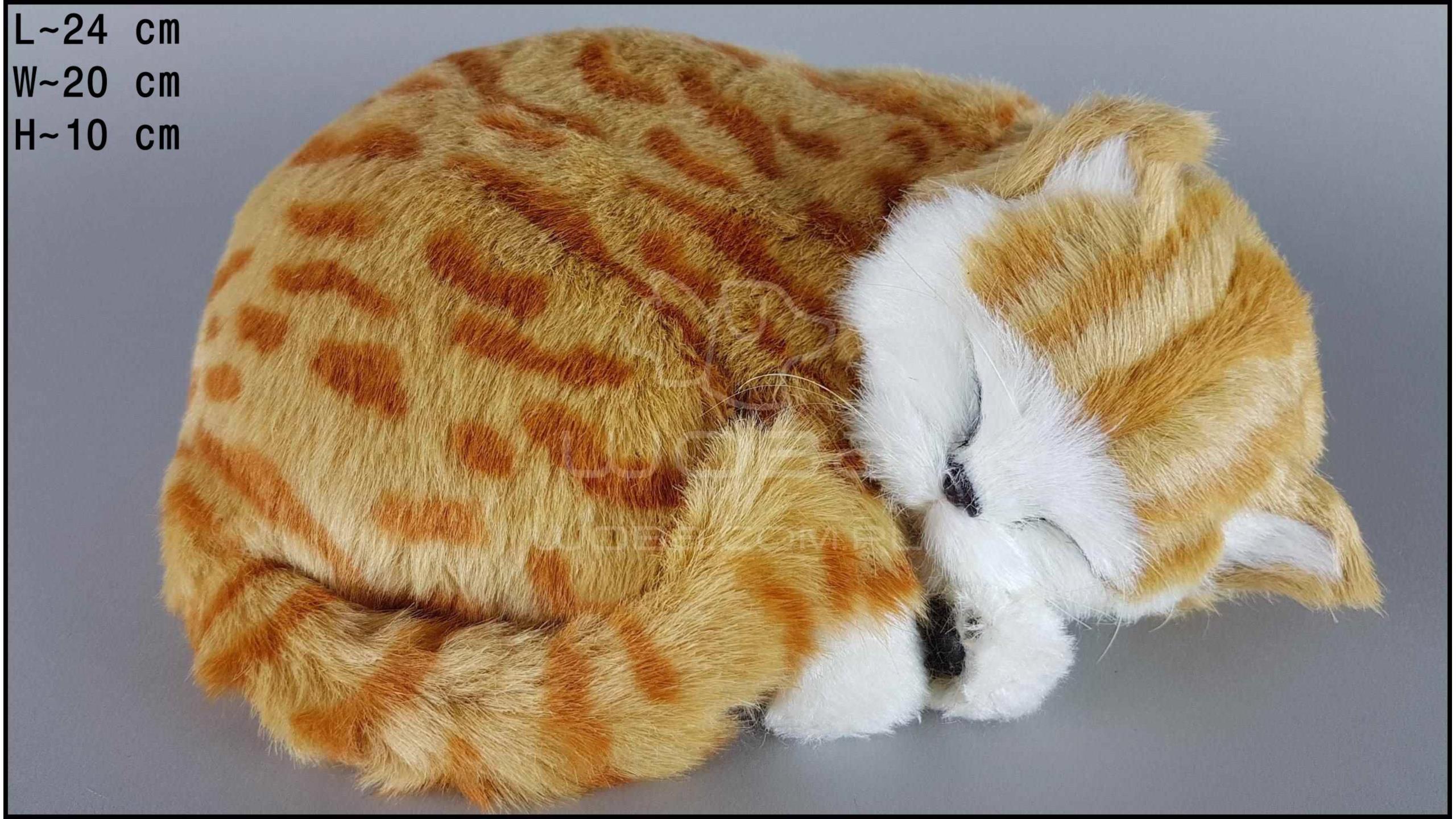 Kot śpiący Rozmiar L - Rudy