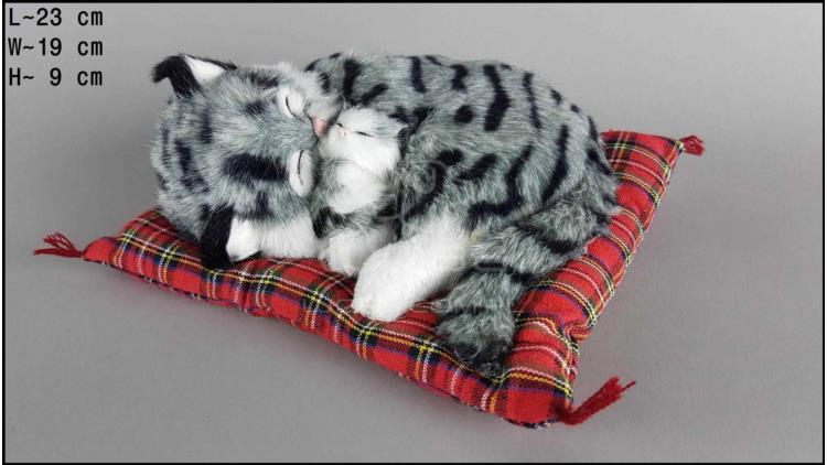 Cat with a kitten on a pillow - Size M