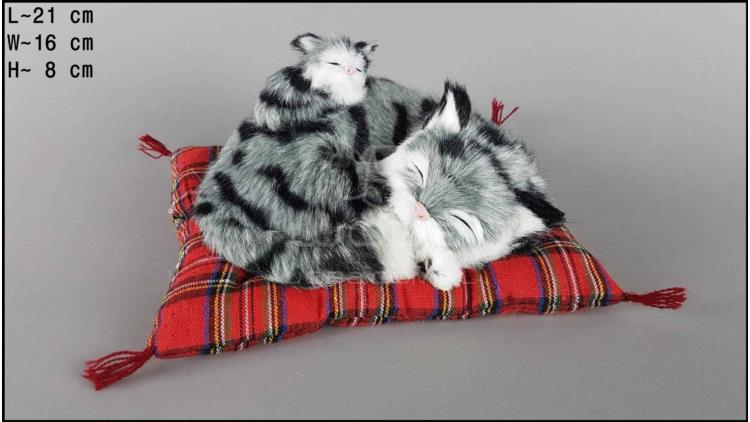 Cat with a kitten on a pillow - Size S