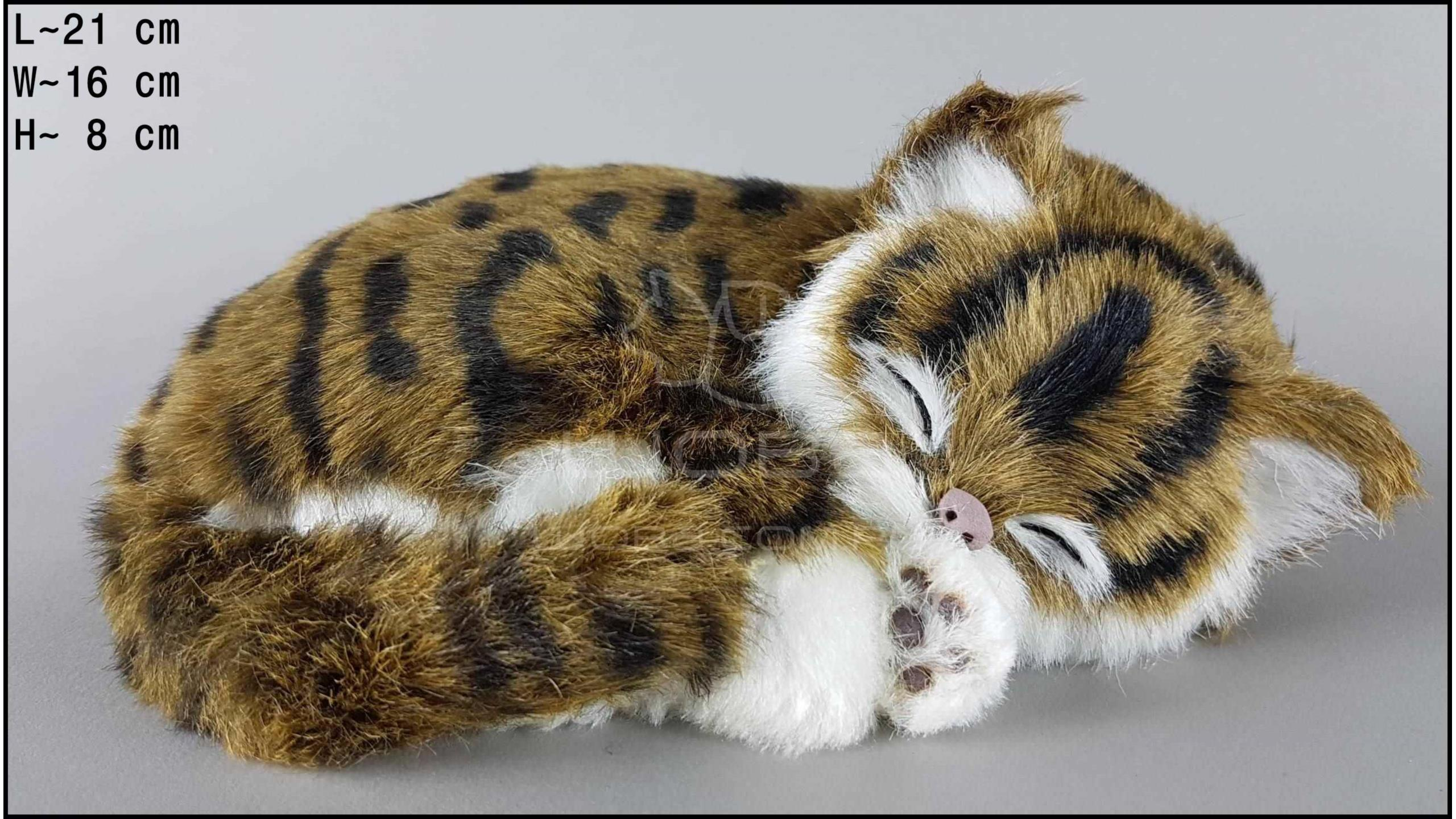 Kot śpiący Rozmiar M - Brązowy