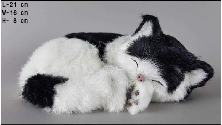 Cat sleeping - Size M - Black & White