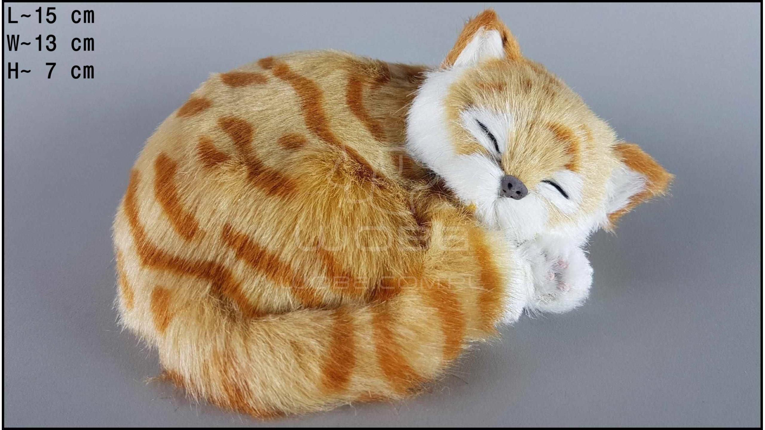 Kot śpiący Rozmiar S - Rudy