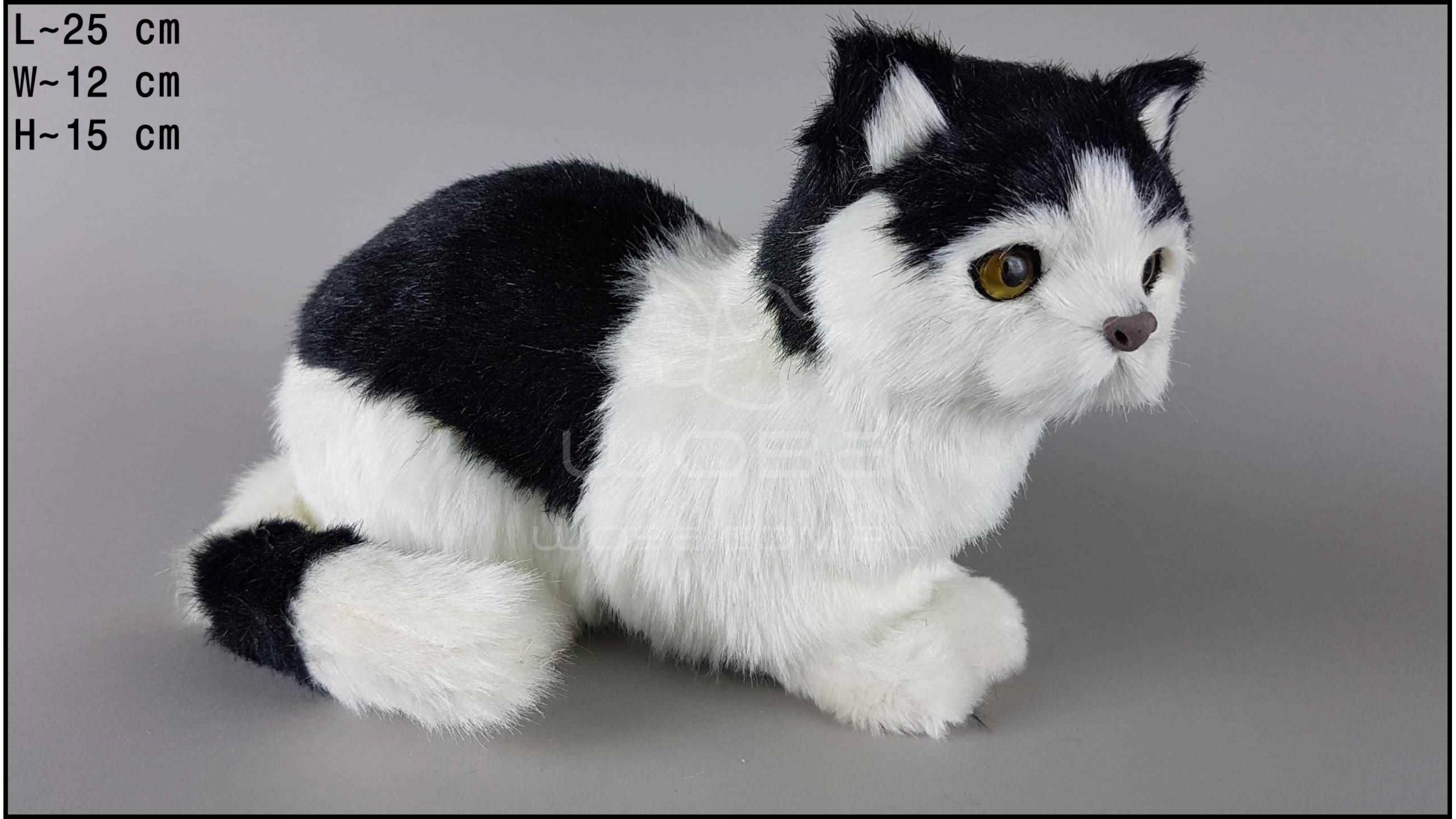 Large cat sitting - Black & White