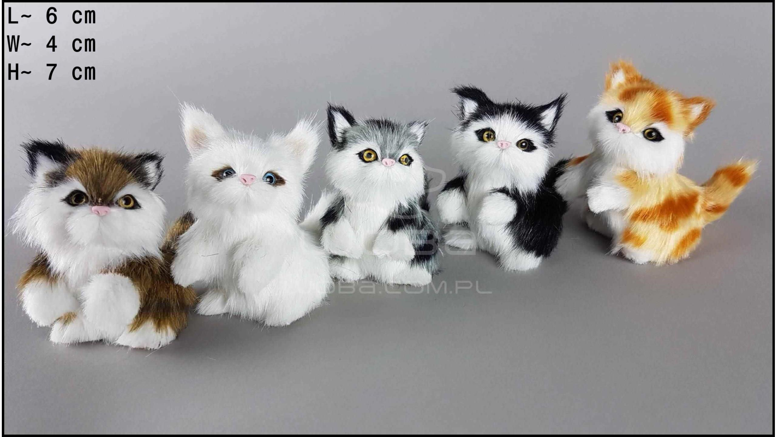Kittens with 2 paws raised up (5 pcs in a box)