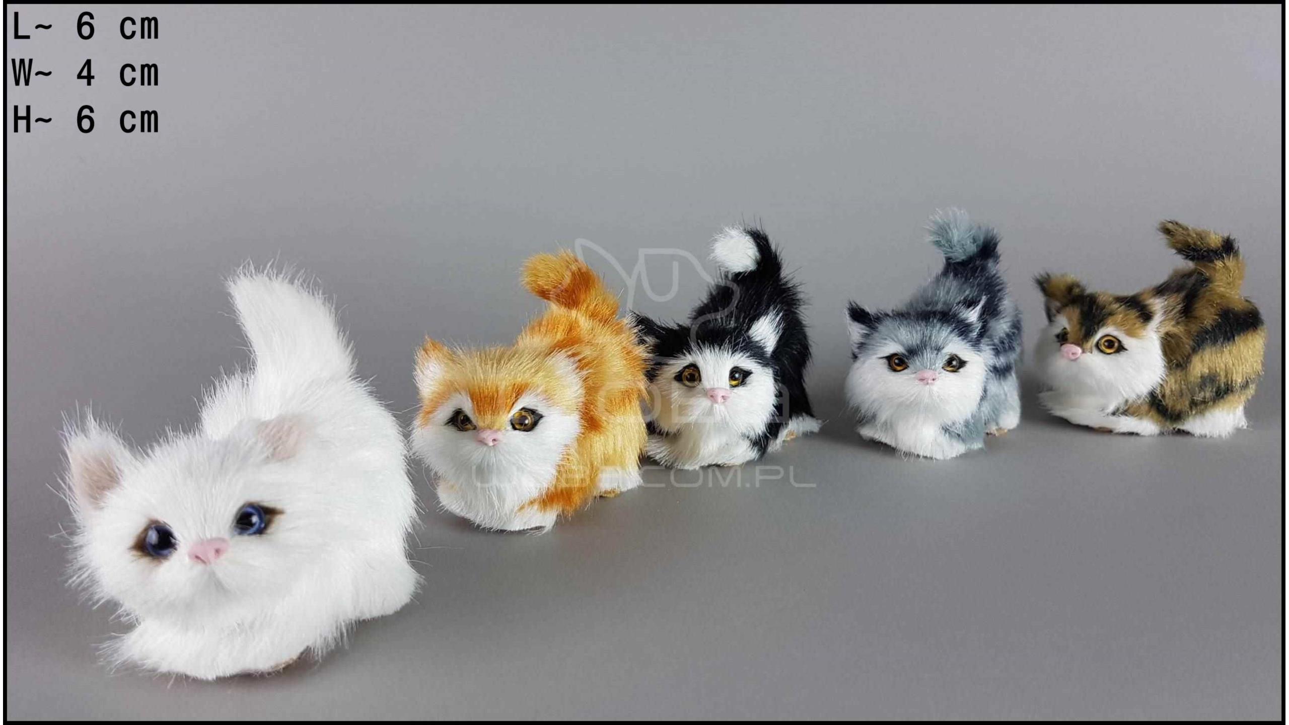 Kotki czające się (5 szt. w opakowaniu)