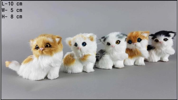 Kittens with a pawn (5 pcs in a box)