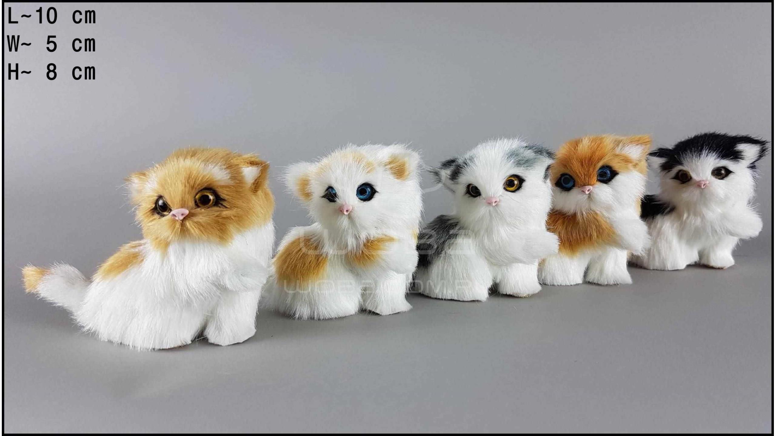 Kotki z łapką (5 szt. w opakowaniu)